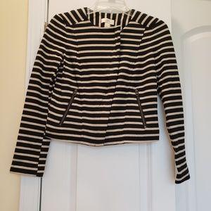 Ann Taylor Loft Zip Front Jacket/Blazer